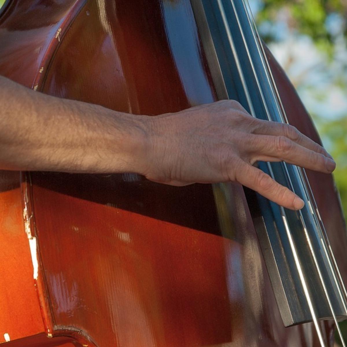 Compare And Contrast The Cello Vs The Double Bass Learnivore